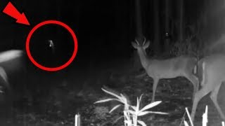 5 Scariest Things Caught in the Woods!