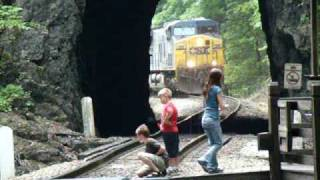 NS AND CSX TRAINS AND A WATER SNAKE AT NATURAL TUNNEL STATE PARK