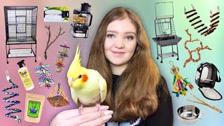 EVERYTHING YOU NEED Before You Get a Parrot!