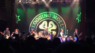 """Flogging Molly - """"Another Bag of Bricks"""" and """"(No More) Paddy's Lament"""" (Live in San Diego 3-7-13)"""