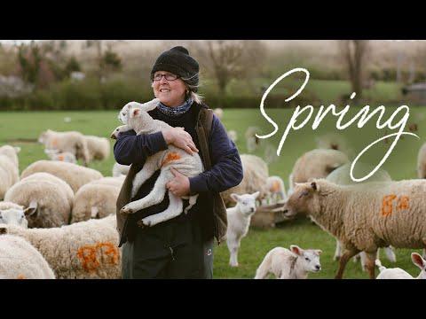 British Farming in Spring