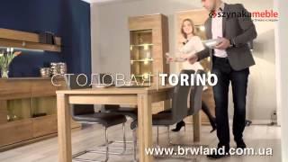 Torino Szynaka в Украине. Польская мебель Торино Шинака(Польская мебель TORINO SZYNAKA – изысканная коллекция с уникальным природным рисунком. Выпускается в цвете: дуб..., 2015-09-20T16:40:42.000Z)