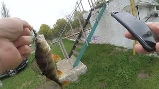 Рыбалка в Ирпене Река лесное озеро военный ДОТ Ловля окуня