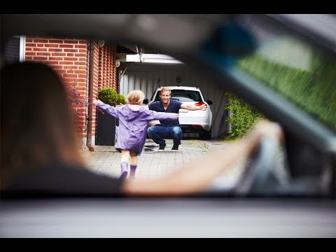 """How to get """"visitation rights"""" in a Nevada custody case"""