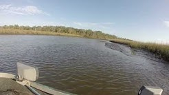 Airboat ride Jacksonville