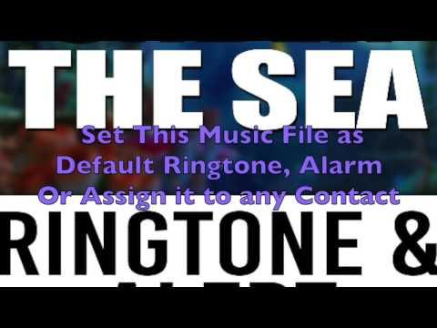 Under the Sea Ringtone and Alert