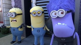 We Meet Minions & Gru at Universal Studios Hollywood, Including Purple Evil Minion - w/Agnes, Edith