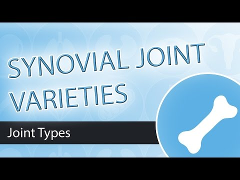 Synovial Joint Types