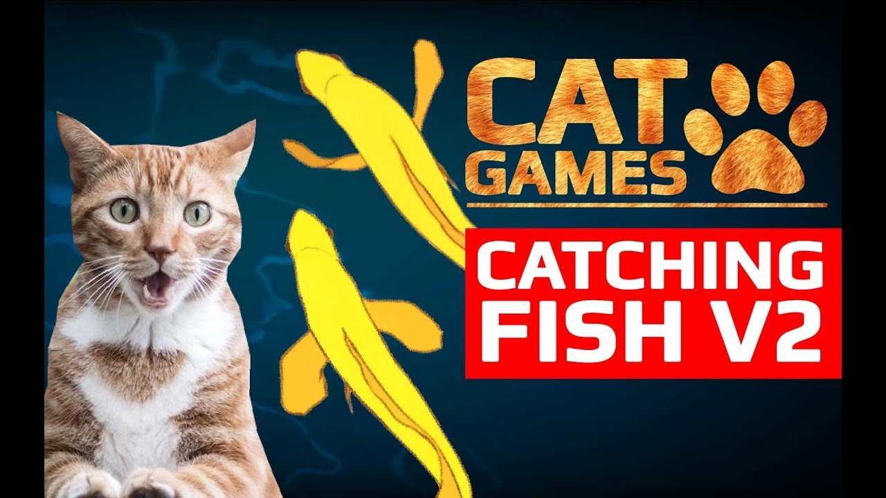 Cat games catching fish v2 entertainment videos for for Fish cat game