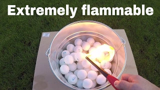 Why Are Ping Pong Balls So Flammable? Lighting 100 Ping Pong Balls On Fire thumbnail