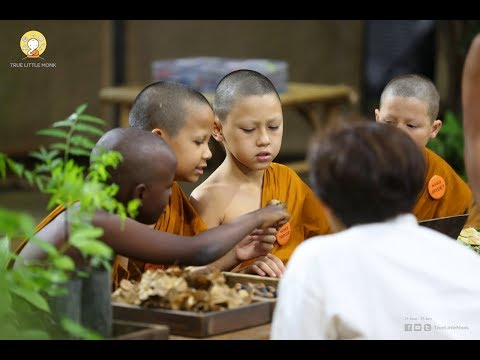 Do mindful meditation : Planting the trees | EP.16 | TRUE LITTLE MONK |