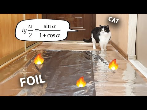 Do Cats Walk On Foil? An Experiment.