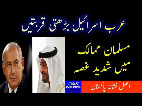 Muslim countries Reaction on UAE and ISRAEL Deal | Israel United Arab Emirates Agreement