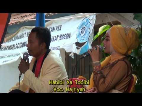 HABIBI YA TOBIBI - Hajriyah