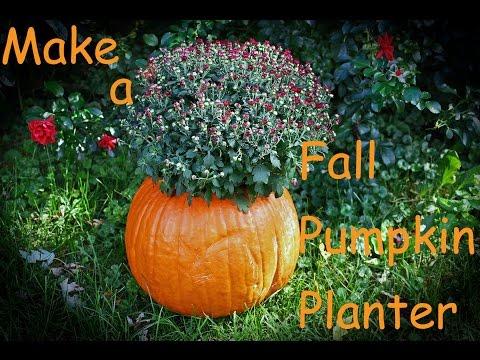 Fall Pumpkin Mums Planter