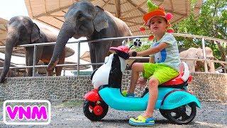 Nikita bé nhỏ cưỡi và chơi ở sở thú Video cho trẻ em