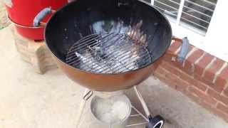 Weber One Touch Gold Ash Removal