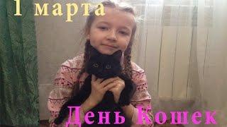 ВЛОГ: День Кошек, Fix Price подарки для кошки, Ника попробовала корм // Видео для детей