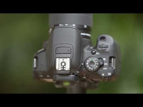Understanding The Mode Dial - How to Use Your Camera, Part 2