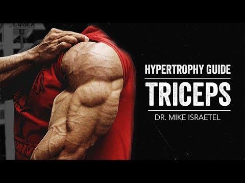 Hypertrophy Guide | Triceps | JTSstrength.com