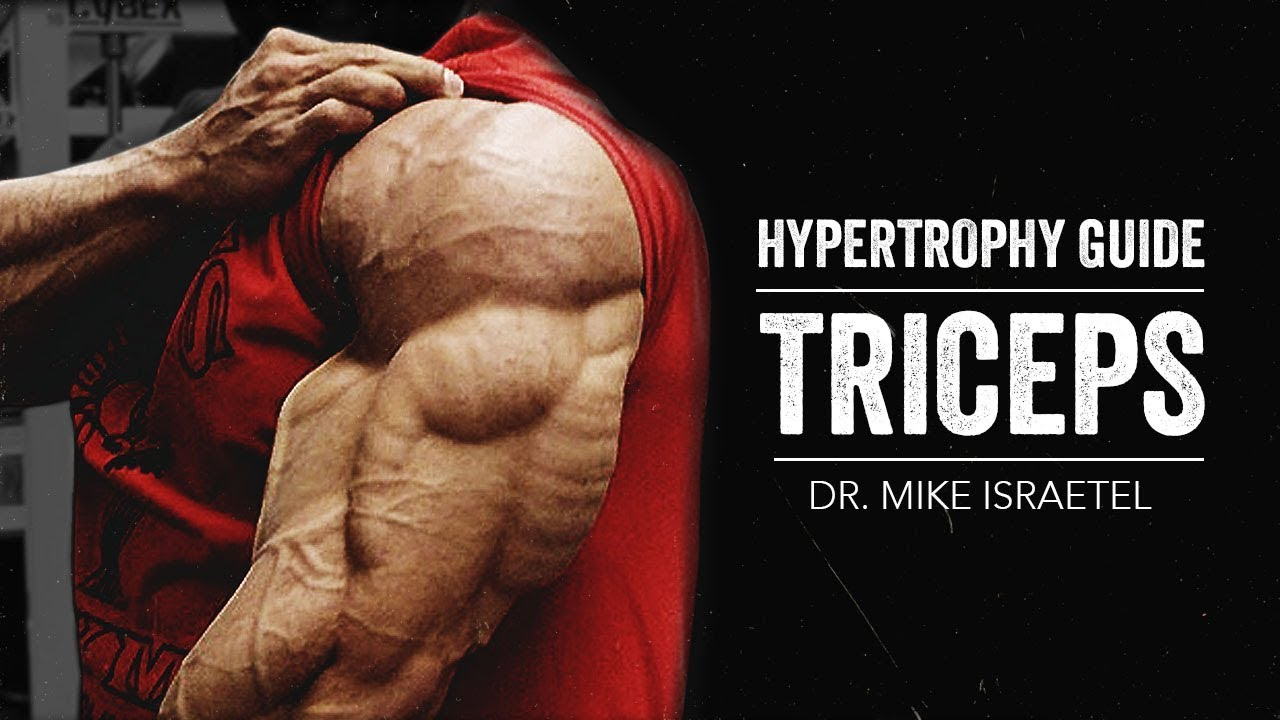 hypertrophy guide triceps jtsstrength com youtube