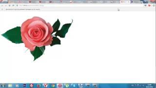 Как сделать прозрачный фон.Используем Paint.net