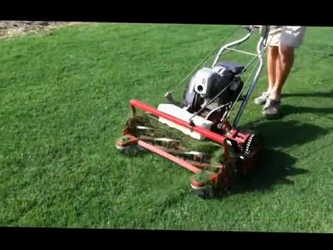 Tru Cut H-27 Reel Mower Mowing Celebration Bermuda Grass In Texas