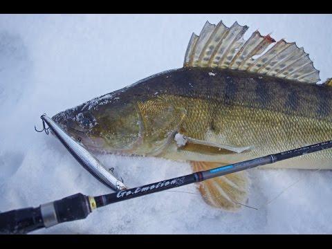 рыбалка весной спиннингом на судака