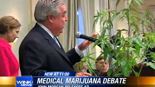 Florida Medical Marijuana News 2013 // John Morgan begins pro-pot radio ad