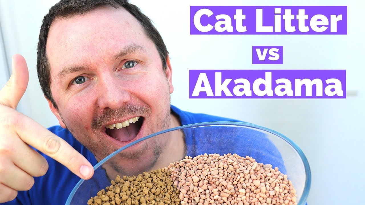 Bonsai Soil Cat Litter Vs Akadama Youtube