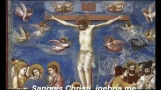 Anima Christi - Alma de Cristo