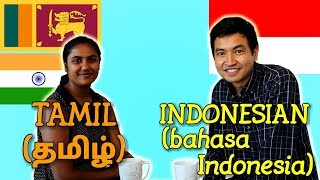 Similarities Between Tamil and Indonesian
