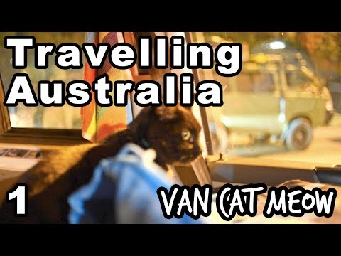 Leaving Everything to Travel Australia in a Van with a Cat