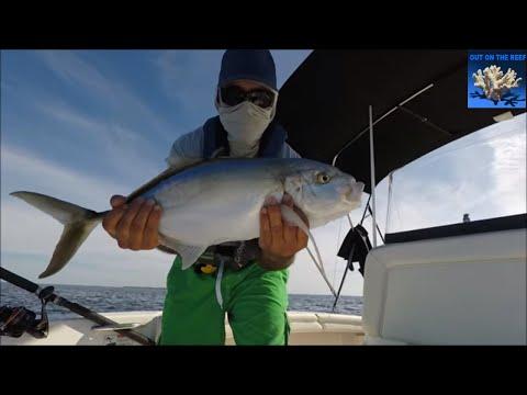 West End Freeport Bahamas Fishing Solo Boating Caribbean Fishing Trip