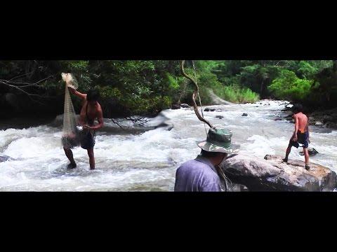 Travel -Laos. Ntaus Ntses, Zos ThoobMiab, Zos ThoobHab. P12/14 (HD)