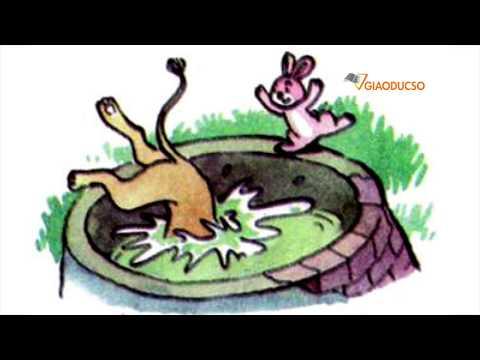 Kể chuyện Thỏ và Sư Tử