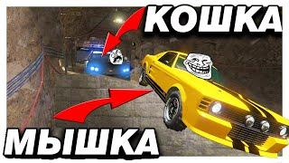 СПРЯТАЛСЯ В ТОННЕЛЕ  И ПОБЕДИЛ!!! КОШКИ МЫШКИ В GTA 5 ONLINE!!!