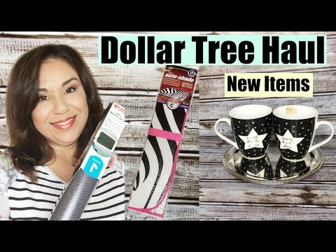Dollar Tree Haul  I Found Some New Must Have Items!