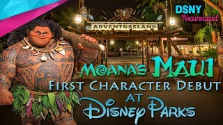 Moana's 'Maui' Debuts As Character At Disney Parks Around The World - Disney News - 6/29/17