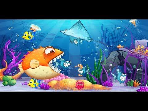 Cá nóc nổi loạn trò chơi cá lớn nuốt cá bé crazy fish eat fish cu lỳ chơi game vui nhộn