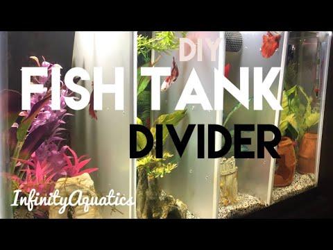 How To Make A Fish Tank Divider