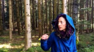 Mad Mind by Jaylis - Video Clip