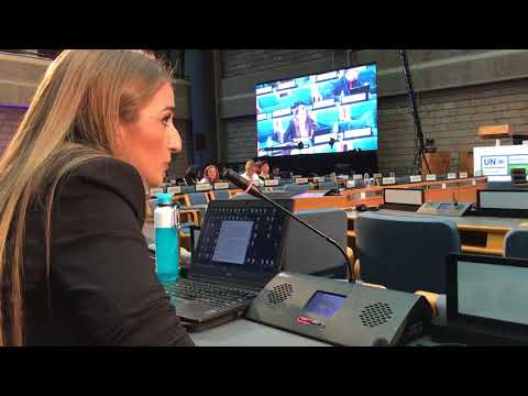 Intervention of HEAL's Viojoleta Gordeljevic at UNEA in Nairobi, Kenya 2017