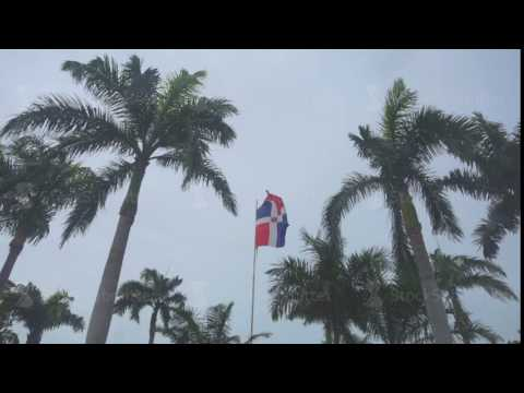 The flag of the Dominican Republic among the palms