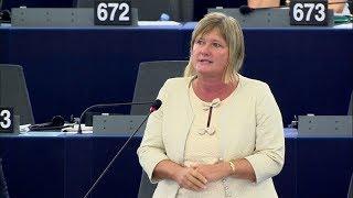 Gál Kinga: A Sargentini-jelentés célja a Néppárt megosztása - ECHO TV