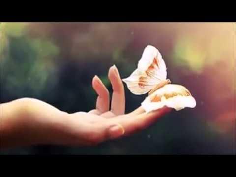 Изображение предпросмотра прочтения – ЕкатеринаГилева представляет видеоролик кпроизведению «Слепой музыкант» В.Г.Короленко