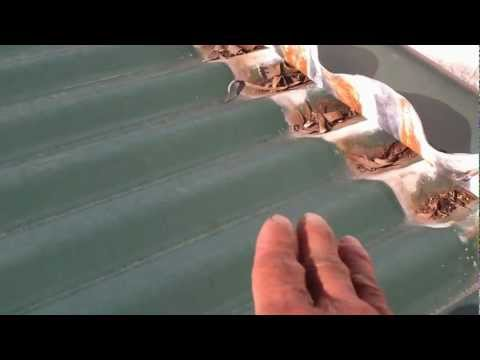 leaking-roof-repairs-sydney---corrugated-roof-installed-too-flat-causing-roof-leaks