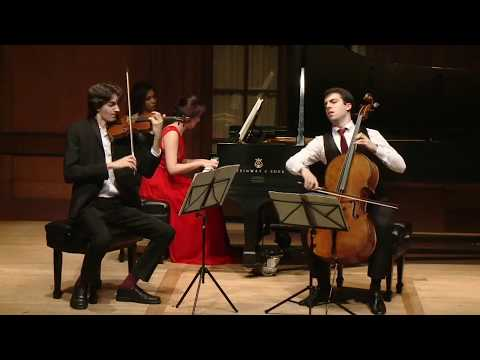 Brahms B-major Piano Trio no. 1, Op. 8