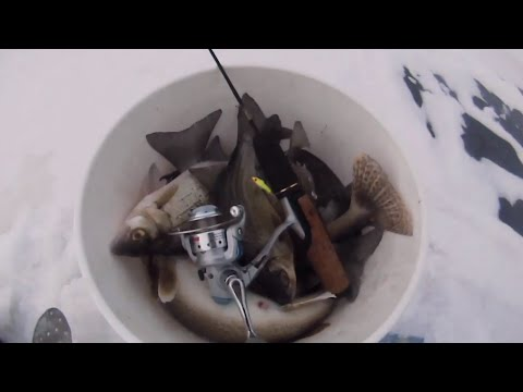 Ice Fishing 2015 | Lake Winnebago, WI