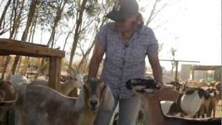 California's Small Farms: Soledad Goat Farm